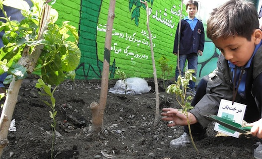 Environment-Training_Children_Iran