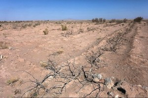 water-crisis_Iran