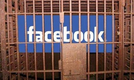facebook-activist-600x355