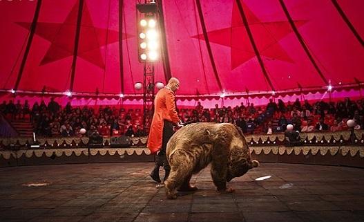 Circus07